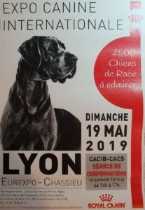 Exposition canine Eurexpo 2019