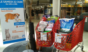 Photo collecte Auchan 22.06