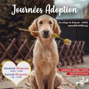 Visuel journées adoption Brignais