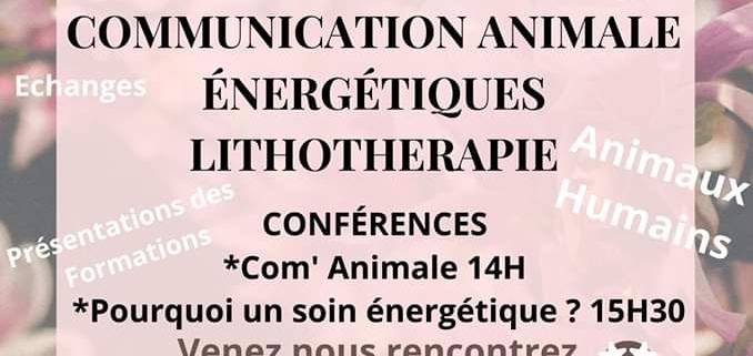 Affiche evenement - 1er mars 2020 - Saint-Julien