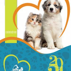 Grand calendrier chats et chiens à spirale