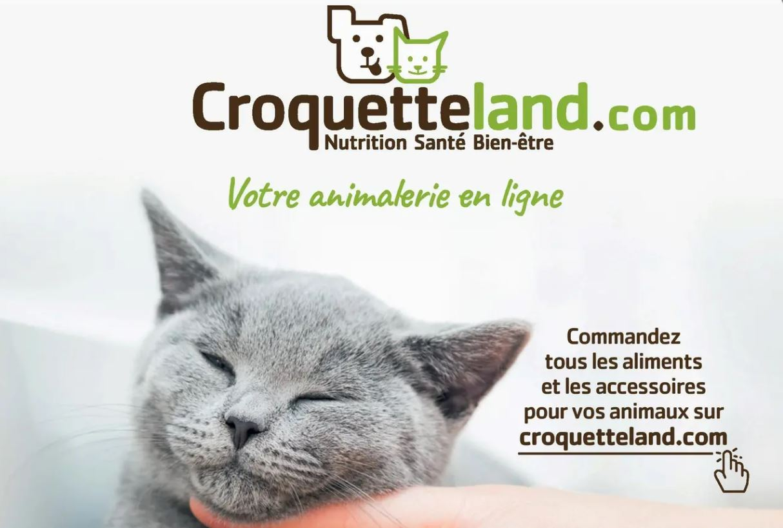 Image-Croquetteland