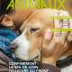 La Protection des Animaux N°244