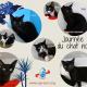 Journée du chat noir