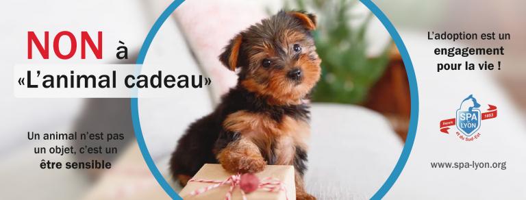 Campagne contre l'animal cadeau