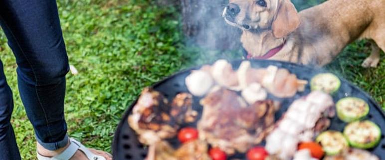 Barbecue-Istock